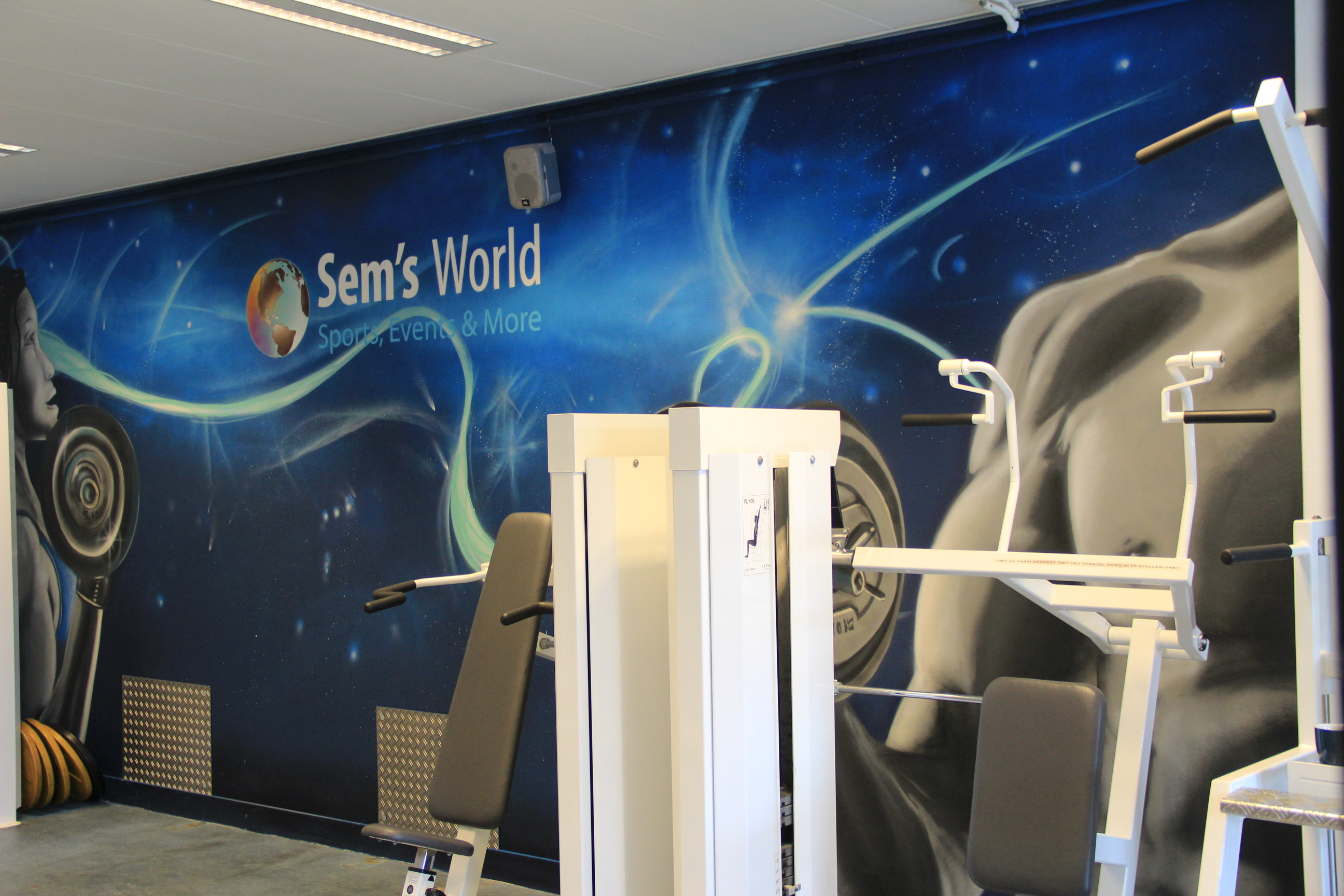 E-Star Gym mural into Sems World