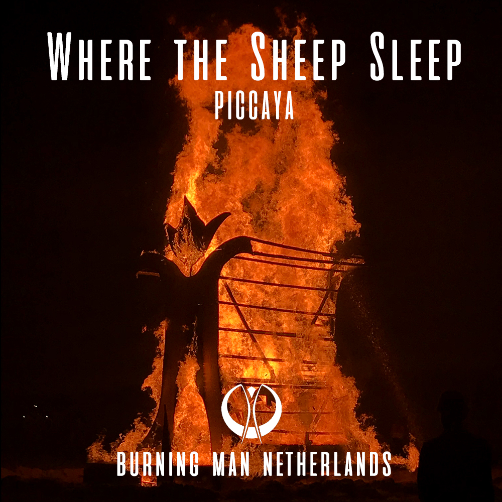 Burningman NL   The Sheep 2019